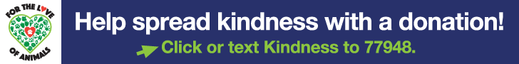 Help spread kindness with a donation. Click or text Kindness to 77948.
