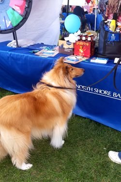 Bank Participates in Elmbrook Humane Society's Wagfest